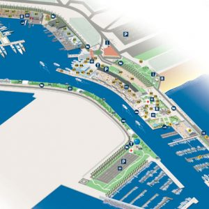 MAP americas cup port