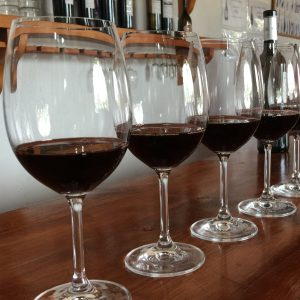 Valencia Wine Tours 2